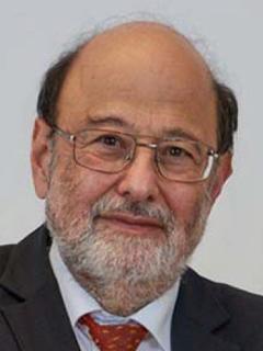 Professor A. Min Tjoa